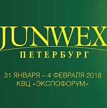 Пригласительный билет на выставку «JUNWEX Петербург», 31 января — 04 февраля